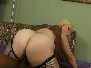 Fat fucking ass of white chunky whores Vol. 5